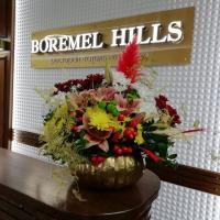 BOREMEL HILLS (готель) фото #1