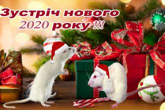 """Новий рік у """"Скольмо"""""""