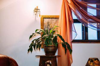 про готель, «Antique House»(готель) фото #9