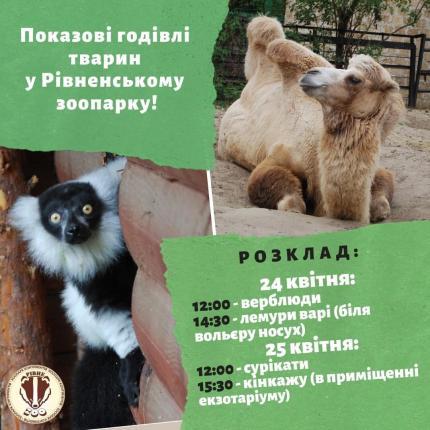 фото Запрошуємо на показові годівлі тварин!