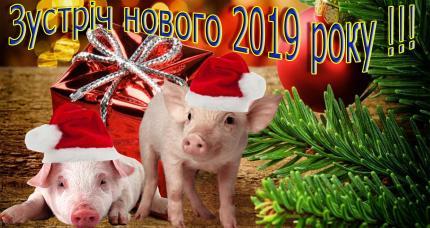 """фото Новий рік у """"Скольмо"""""""